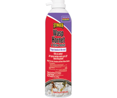 Bonide® Wasp & Hornet Killer - Foam