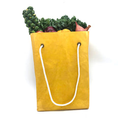 grocery bag with handle