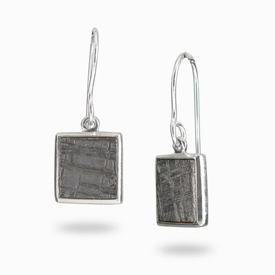 Gibeon Meteorite earrings