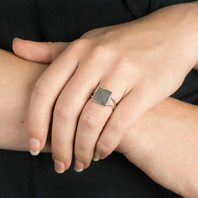 Gibeon Meteorite Ring on Model
