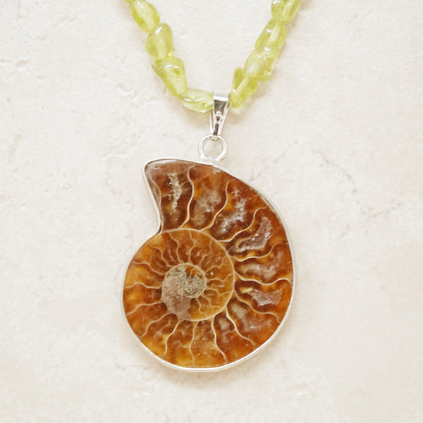 Ammonite Fossil Necklace with Green Quartz