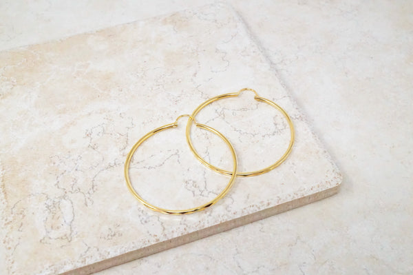 Jenny Faceted Hoop Earrings
