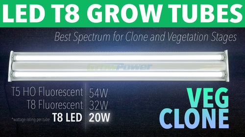 GrowPower LED T8 Grow Light Bulbs for Clones and Veg (5-25 Pack)