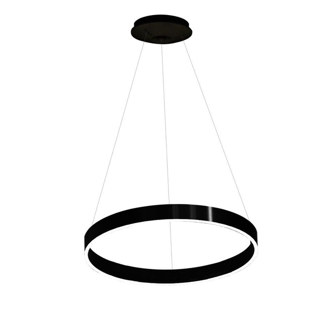 Architectural LED Single Ring Pendant Light 100cm