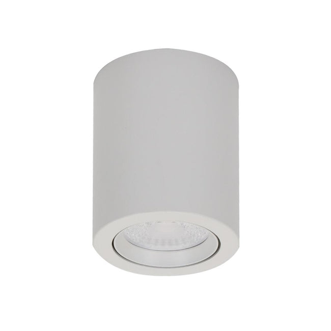 Domus Lighting NEO-10 Surface Mounted Tiltable 10W LED Downlight
