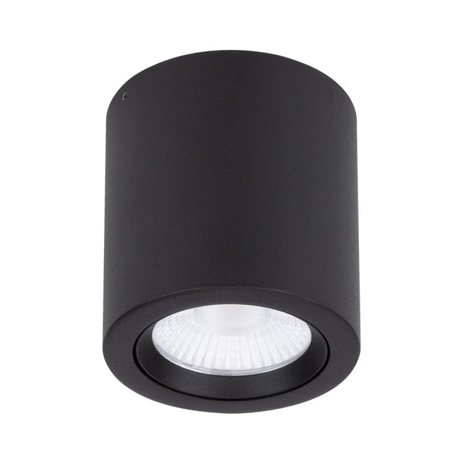 Domus Lighting NEO-20 Surface Mounted Tiltable 20W LED Downlight