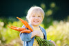 4 Easy Ways to Sneak Veggies Into Your Toddlers Diet