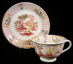 Cup And Saucer Early Regout Dutch Polychrome Transferware 1860s