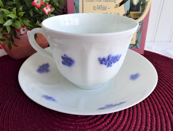 Adderleys Cup And Saucer Grandmothers Chelsea Sprigged 1890s