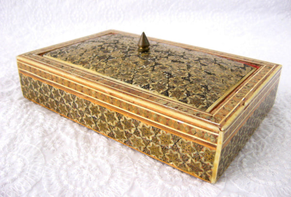 Anglo Indian Sadeli Micro Mosaic Jewelry Box Edwardian Era Ruched Velvet Persian