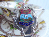 Welsh Tea Caddy Spoon Tea Scoop Enamel Shield Finial Penarth 1930s