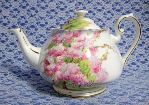 Teapot Royal Albert Blossom Time 1950s England Bone China Tea Pot