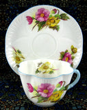 Shelley Begonia Cup and Saucer Dainty Shape Blue Trim 1950s Teacup