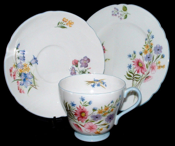 Shelley Wild Flowers Trio Teacup Saucer Plate Richmond Shape 1950s Blue Trim