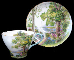 Shelley China Woodland Cup And Saucer New Cambridge
