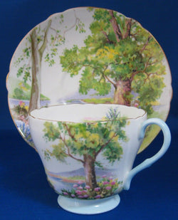 Shelley England Cup and Saucer Woodland Richmond Shape Forest Scene