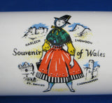 Retro Welsh Rolling Pin Retro Souvenir Of Wales Fills With Water 1950s