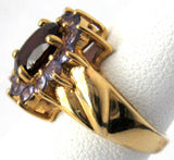 Cluster Ring Garnet 12 Tanzanites 10kt Gold 1970s Engagement January Birthstone 10k