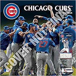 Chicago Cubs 2019 12x12 Team Wall Calendar