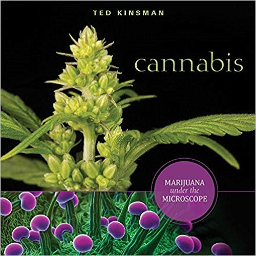 Cannabis: Marijuana Under the Microscope