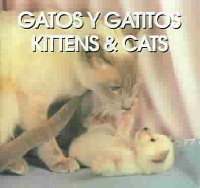 Gatos Y Gatitos/Kittens & Cats (SPANISH)