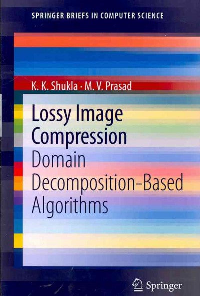 Lossy Image Compression: Domain Decomposition-Based Algorithms (SpringerBriefs in Computer Science)