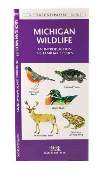 Michigan Wildlife: An Introduction to Familiar Species