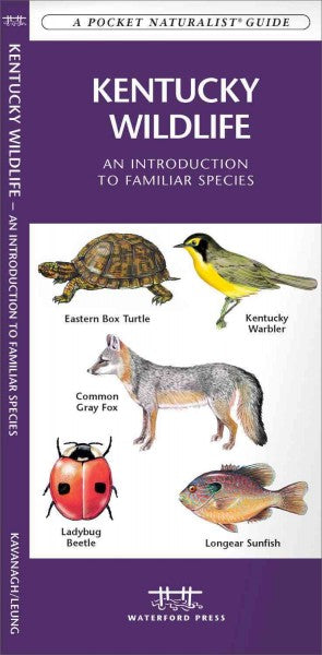 Kentucky Wildlife: An Introduction to Familiar Species (A Pocket Naturalist Guide): Kentucky Wildlife