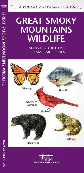 Great Smoky Mountains Wildlife: An Introduction to Familiar Species (A Pocket Naturalist Guide)