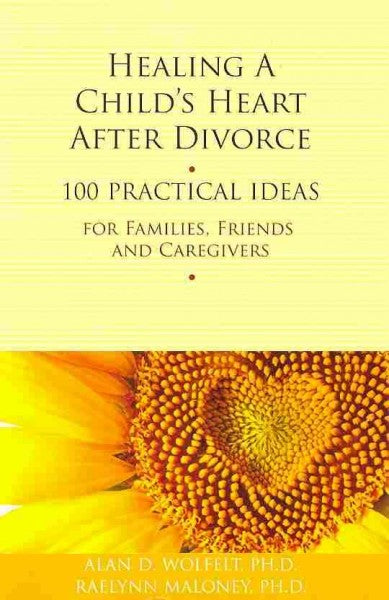 Healing a Child's Heart After Divorce: 100 Practical Ideas for Families, Friends, and Caregivers