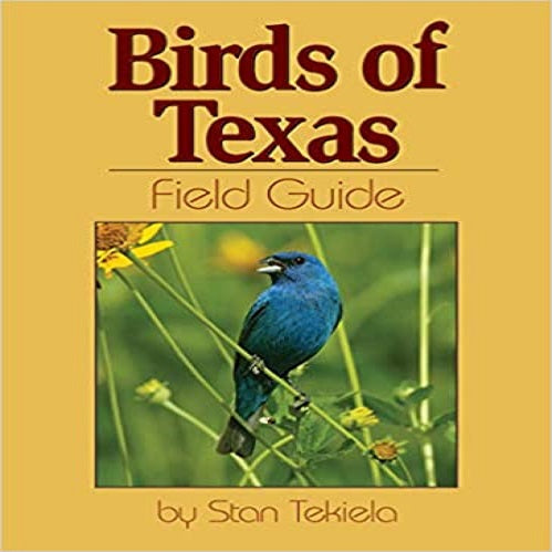 Birds of Texas Field Guide ( Bird Identification Guides )