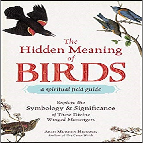 The Hidden Meaning of Birds--A Spiritual Field Guide: Explore the Symbology and Significa