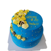 Two tier blue & yellow cake 双层蓝黄蛋糕