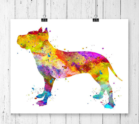 American Staffordshire Terrier Watercolor Art Print - Unframed