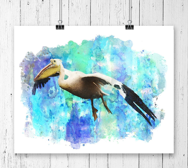 Pelican Bird Watercolor Art Print - Unframed - Zuzi's