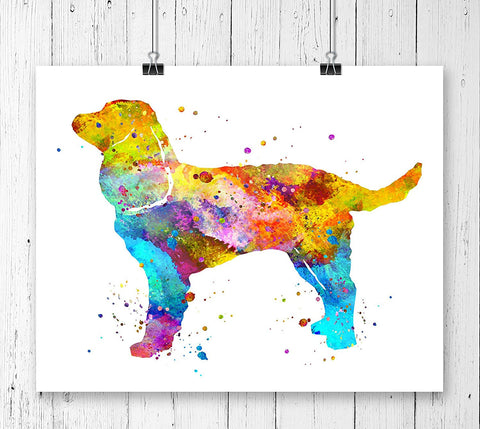 American Water Spaniel Watercolor Art Print - Unframed