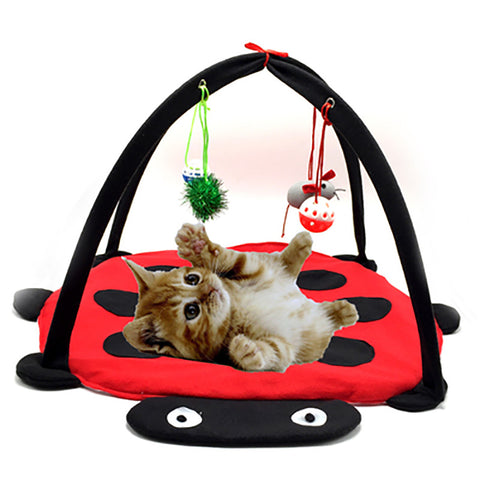Cat Bed with Dangly Toys