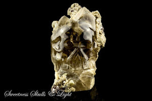 Brazilian Smoky Quartz Skull Sculpture