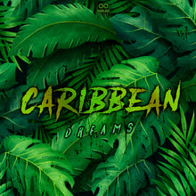 Load image into Gallery viewer, Carribean Dream