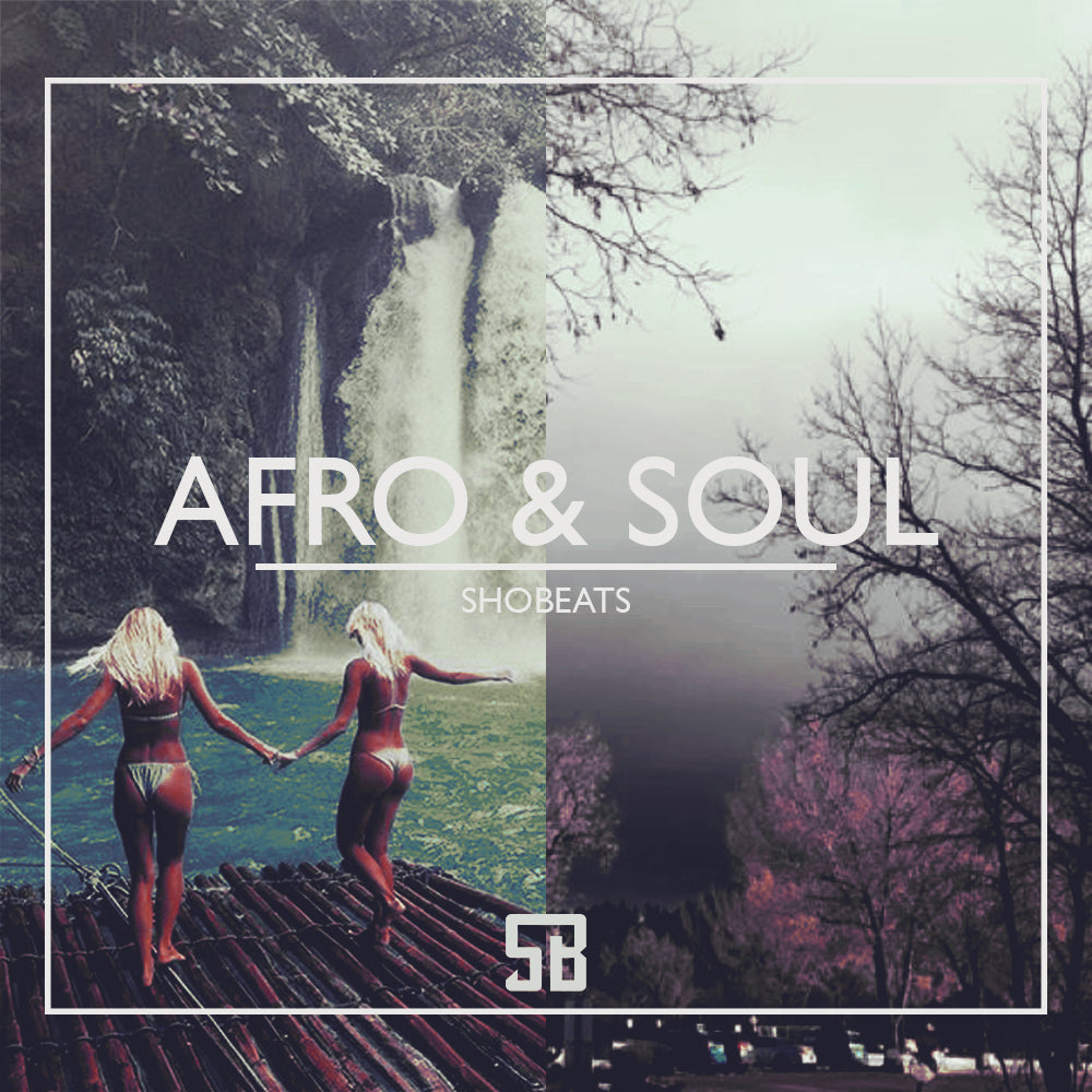 AFRO & SOUL - Sonic Sound Supply - drum kits, construction kits, vst, loops and samples, free producer kits, producer sounds, make beats