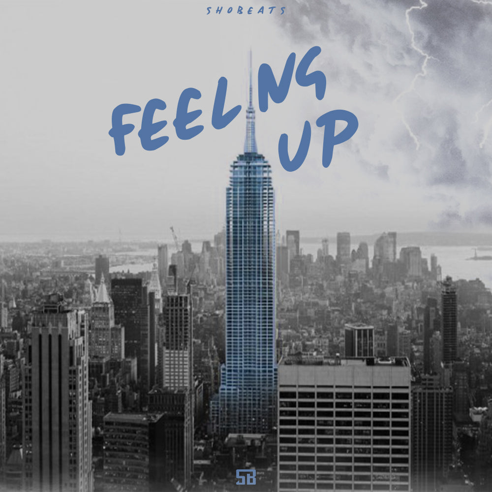 FEELING UP - Sonic Sound Supply - drum kits, construction kits, vst, loops and samples, free producer kits, producer sounds, make beats