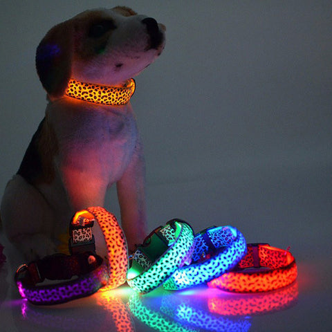 Flashing Glow Lights Dog Collar