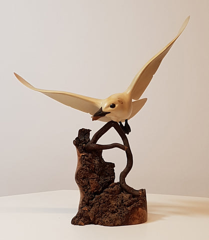 Ivory Gull - Original Wood Carving