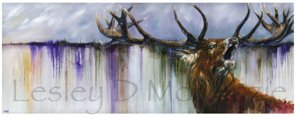 Dawn Call - A Portrait of a Highland Red Deer Stag