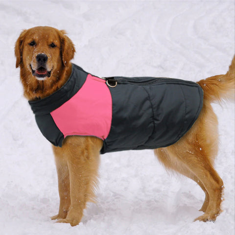 LB® Padded Dog Vest/Coat with Zipper and Leash Ring