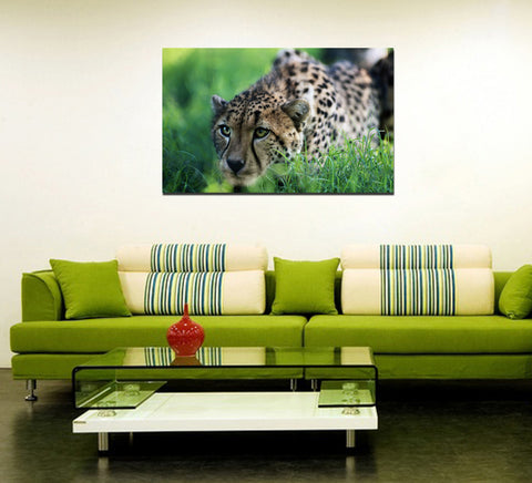 canik111 Canvas Print Stretched Wrapped africa big cat cheetah animal 26x43""