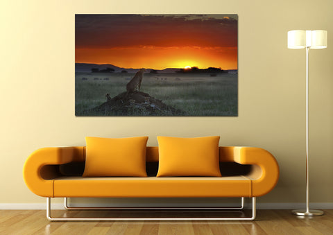 canik144 Canvas Print Stretched African savanna sunset cheetah big cat 26x43""