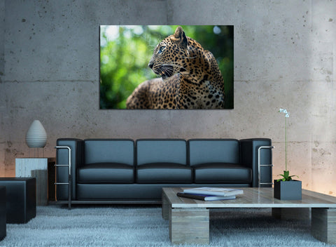 canik155 Canvas Print Stretched Jaguar forest big cat 26x43""