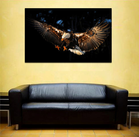 canik158 Canvas Print Stretched Eagle flying predator bird 26x43""