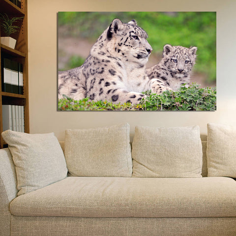 canik172 Canvas Print Stretched snow leopard family mountain big cat 26x43""